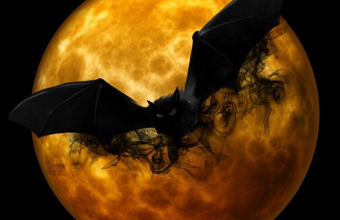 bat-988225 (700x452, 70Kb)