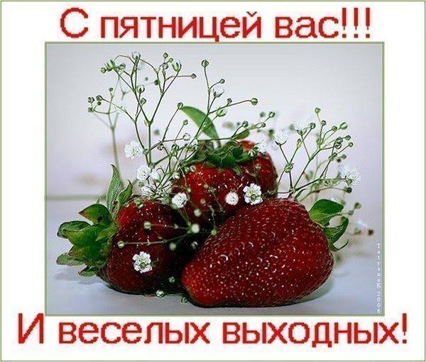 55093864_5_1_1 (600x510, 87Kb)