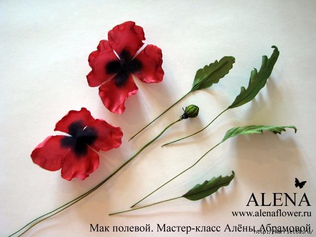 Цветы из ткани. МАК полевой (32) (640x480, 203Kb)