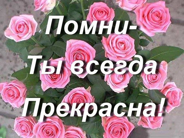 97701cdeab8445004e6dbe36a6b3daa6 (604x453, 89Kb)