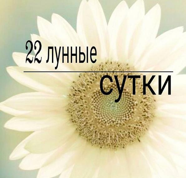 4687843_ad11 (597x569, 82Kb)
