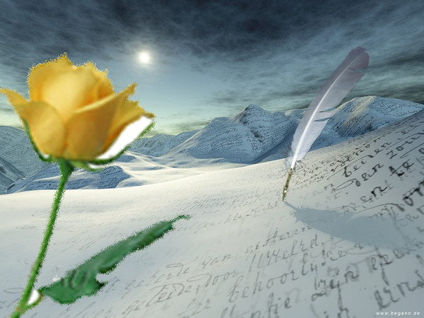 Роза-поэт (600x450, 74Kb)