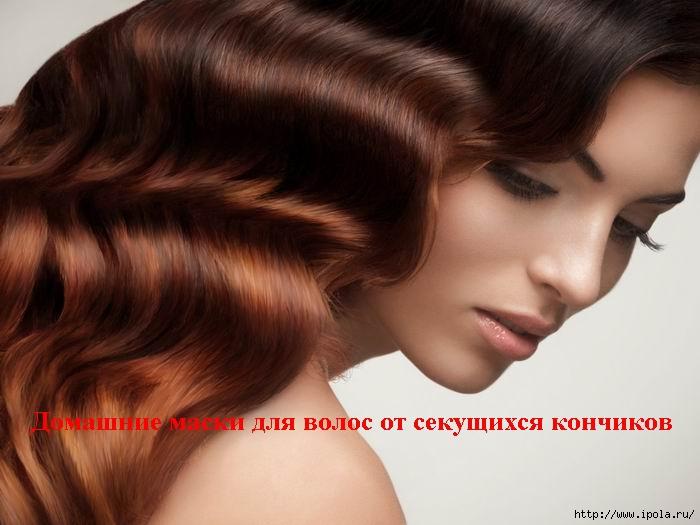 """alt=""""Домашние маски для волос от секущихся кончиков""""/2835299_ (700x525, 159Kb)"""