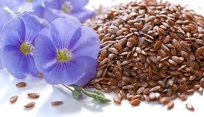 семена льна/3740351_ (296x170, 116Kb)