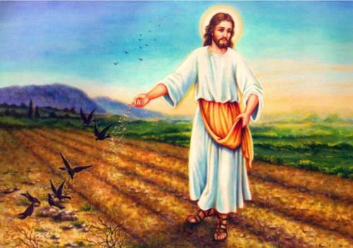 Sower_Jesus_7781312_ (500x351, 71Kb)