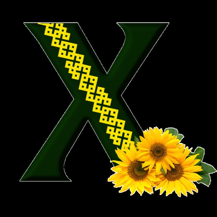х (700x700, 213Kb)