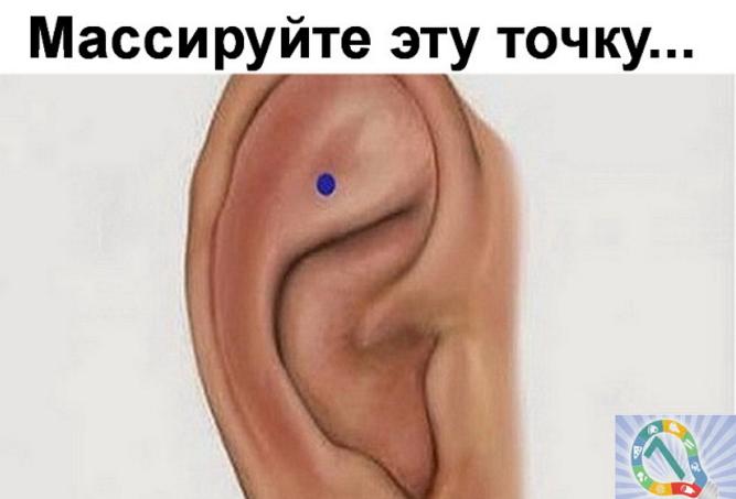 image (5) (667x453, 245Kb)