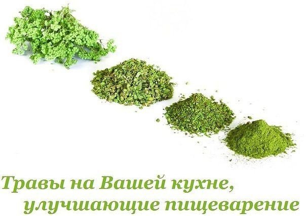 3256587_Travi_na_Vashei_kyhne_ylychshaushie_pishevarenie (604x427, 46Kb)