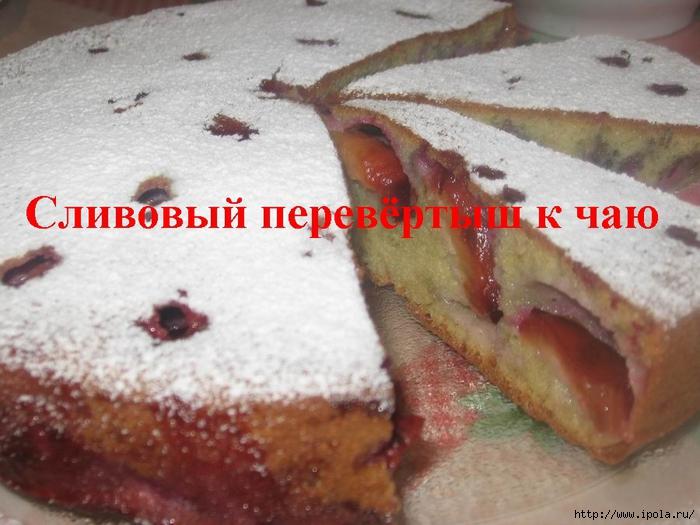 2835299_Slivovii_perevyortish_k_chau (700x525, 253Kb)