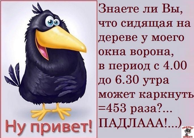 image (684x485, 493Kb)