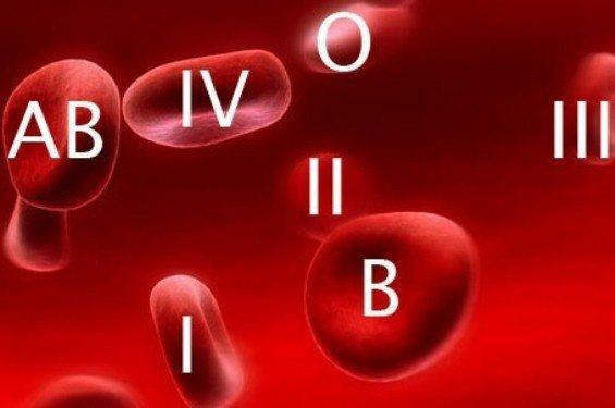кровь (565x375, 61Kb)