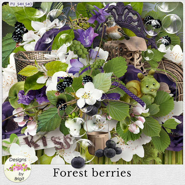 DBB_forestberries_prev (600x600, 449Kb)