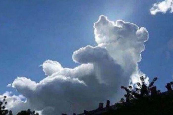 PAY-Winnie-the-Pooh-cloud (700x465, 28Kb)