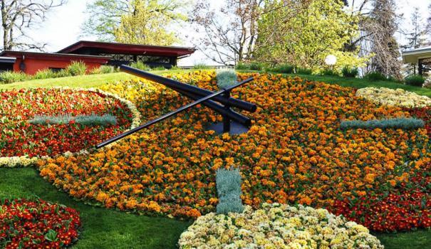 Floral-Clock-fill-605x350 (605x350, 76Kb)