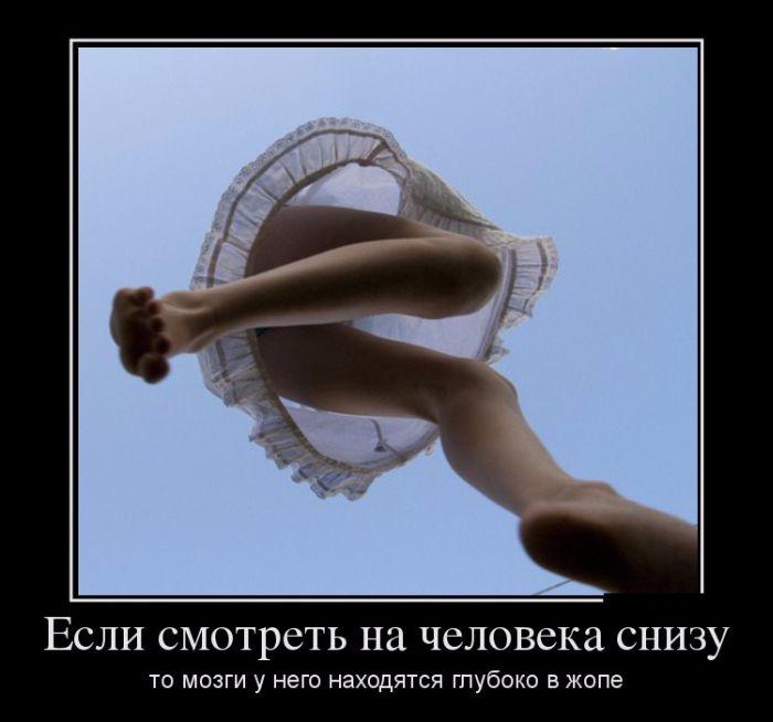 ЮМОР - если снизу смотреть - мозги в жопе! (700x654, 178Kb)