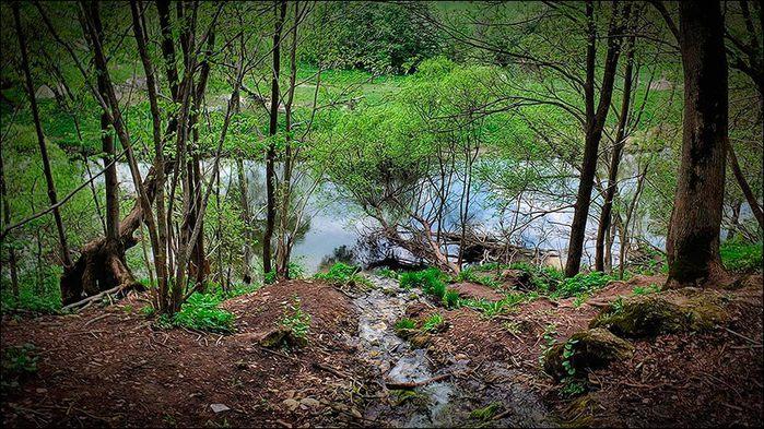 Ручей в Долине СемиКлючей на Наре