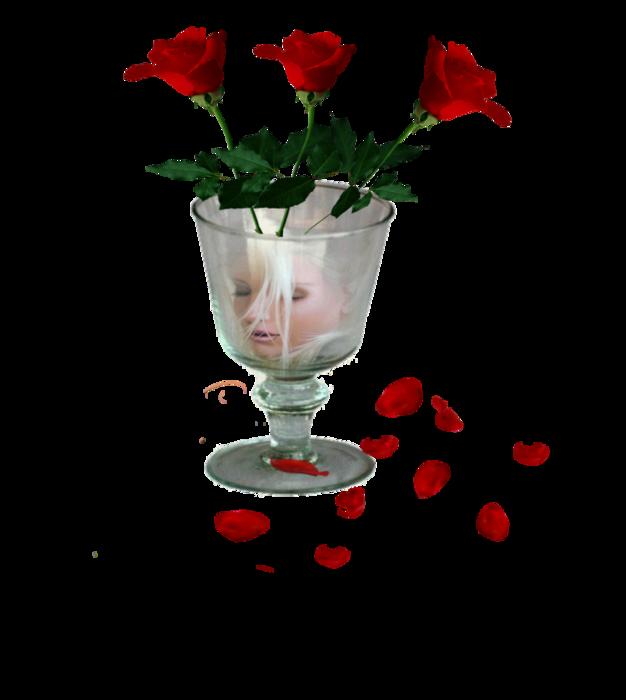 5252596_3_krasnie_rozi (626x700, 174Kb)
