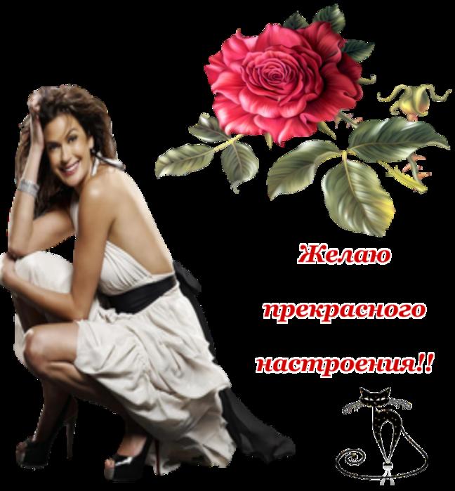 5252596_jelau_prekrasnogo_nastroeniya (648x700, 435Kb)