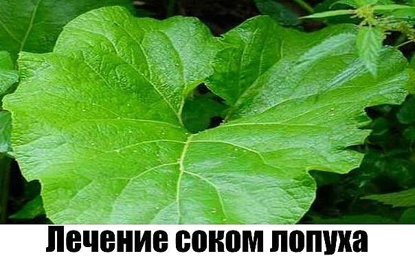image.jpgм (604x373, 71Kb)