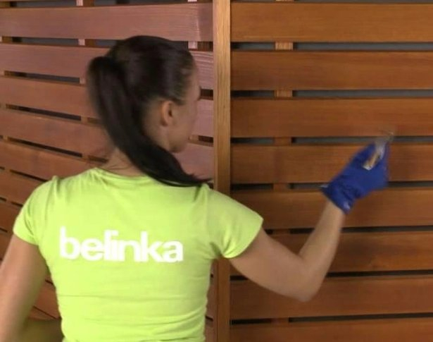 belinka_06615492 (615x485, 168Kb)
