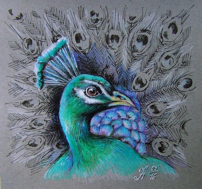 Смотреть как рисуют павлинов