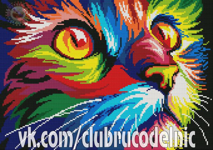 Радужный кот (700x494, 672Kb)