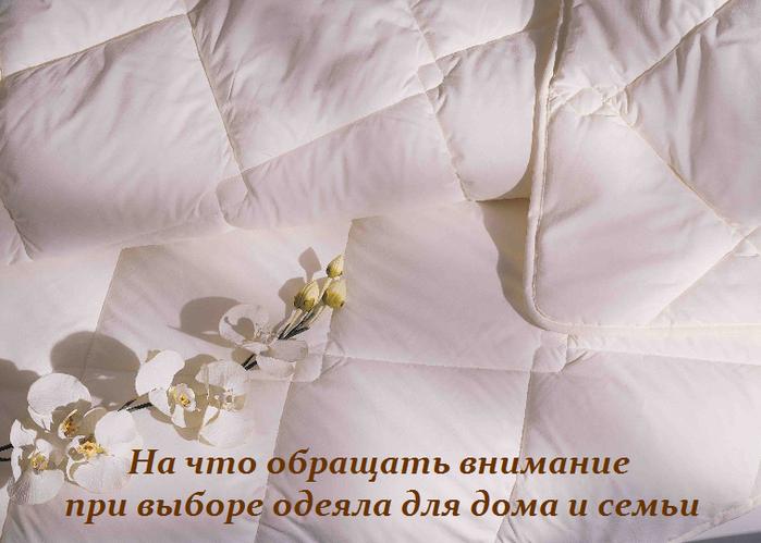 2749438_Na_chto_obrashat_vnimanie_pri_vibore_odeyala_dlya_doma_i_semi (700x499, 405Kb)