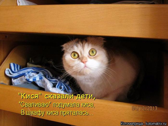 kotomatritsa_eM (700x524, 331Kb)