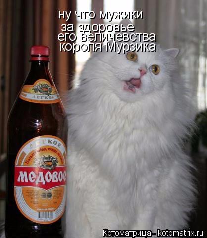 kotomatritsa_r (418x480, 138Kb)