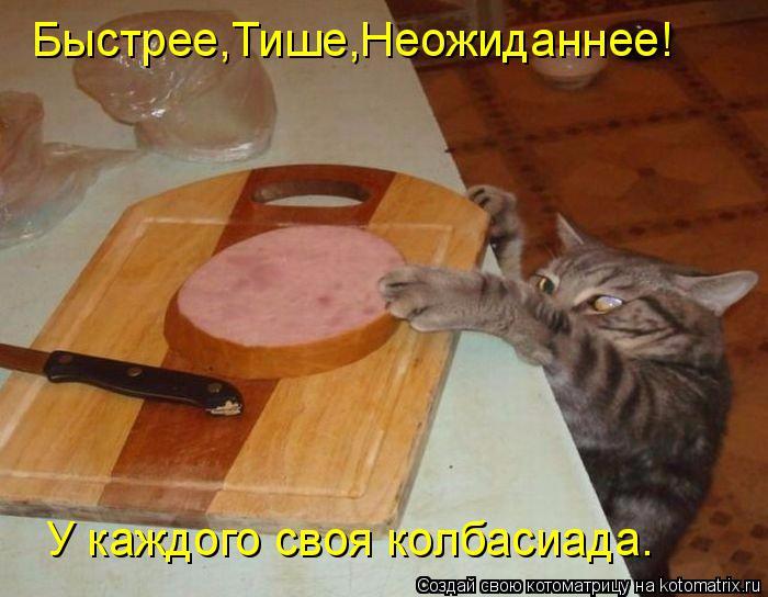 kotomatritsa_v9 (700x544, 315Kb)