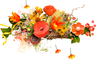 flowers2 (330x204, 121Kb)