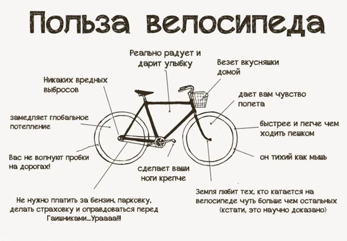 Как выбрать велосипед. Все подробные советы!
