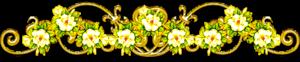 pic (7) (300x62, 37Kb)