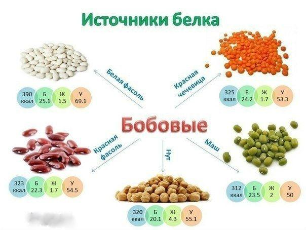 4208855_124641496_5 (604x454, 56Kb)
