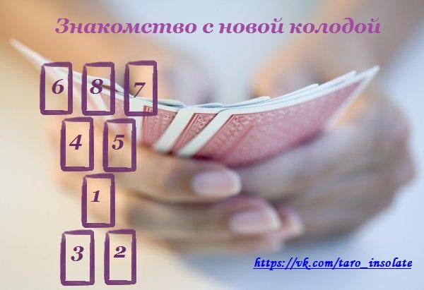 5850402_znakomstvo_s_kolodoy (600x411, 50Kb)