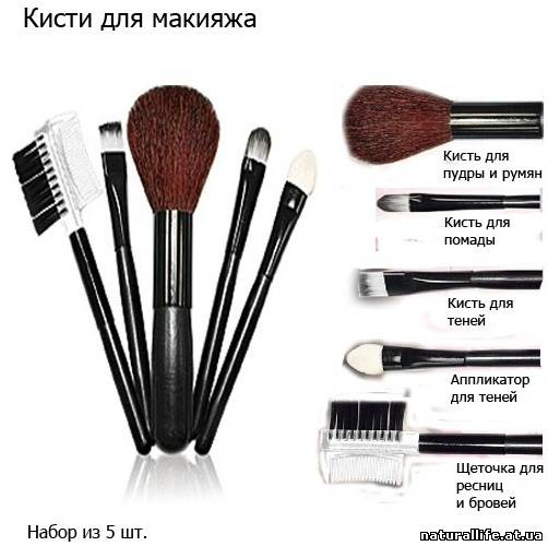 kisti_kiberkiosk (502x500, 110Kb)