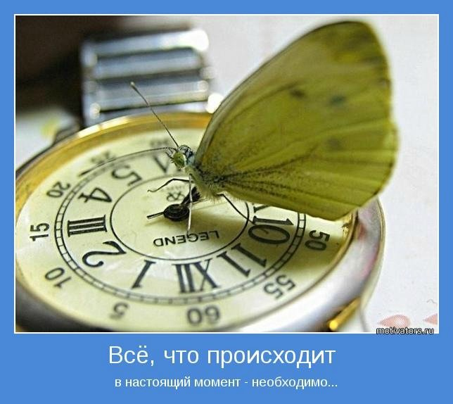 4555414_5c9f398ea57a (644x574, 58Kb)
