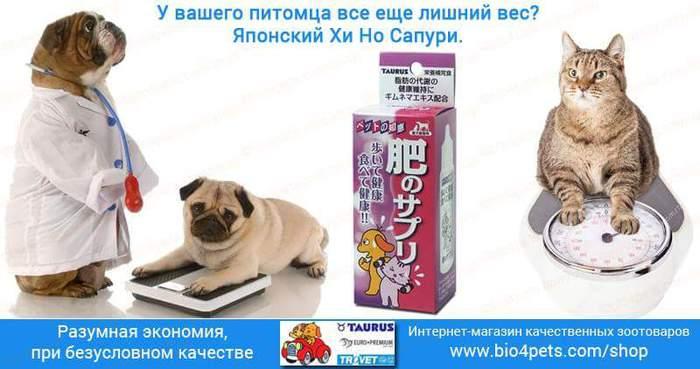 FB_IMG_1471292777417 (700x369, 37Kb)