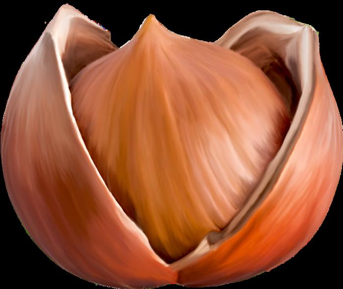 LilyFВe_SoupЗondAutomne_el (82) (700x588, 427Kb)