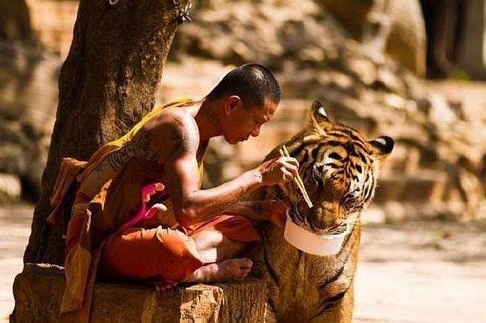 Секрет тибетских лам! После такого питания уходят боли из поясницы