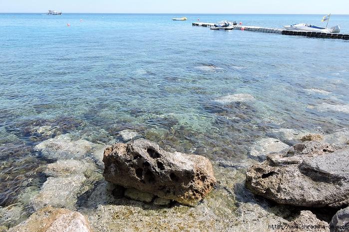 Кипр, май 2016 (229) (700x466, 384Kb)