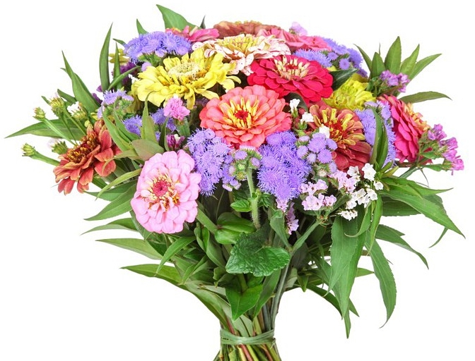 Букет из дачных цветов
