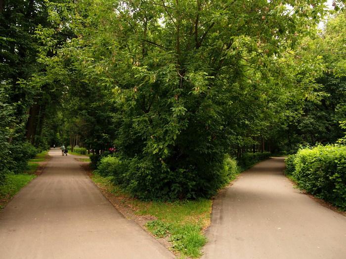 dorozki v parke (700x525, 164Kb)