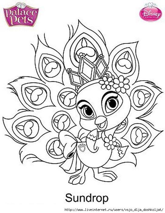 Раскраска для девочек королевские питомцы - 6