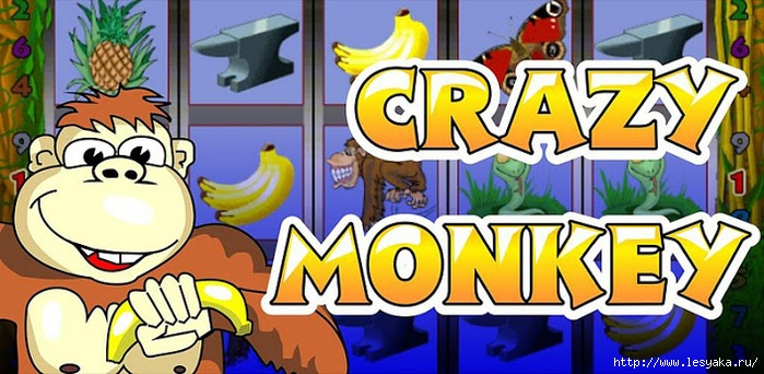 Азартная игра Crazy Monkey (Игрософт) от онлайн казино Guruazarta/3925073_img92738 (700x342, 213Kb)