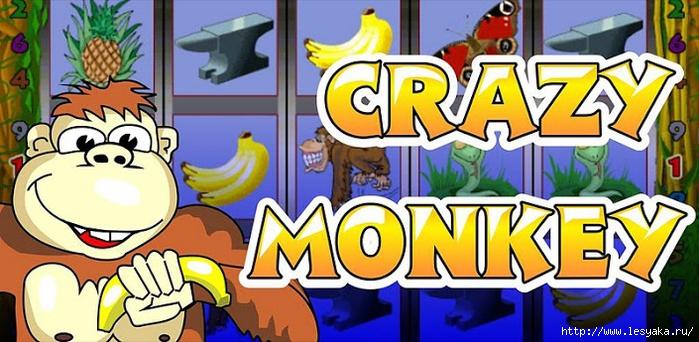 �������� ���� Crazy Monkey (��������) �� ������ ������ Guruazarta/3925073_img92738 (700x342, 213Kb)