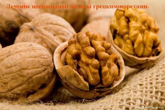 """alt=""""Лечение щитовидной железы грецкими орехами.""""/2835299__2_ (700x466, 211Kb)"""