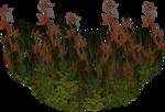 ������ jojo_autumn_forest_elementt_45 (600x409, 663Kb)