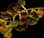 ������ jojo_autumn_forest_elementt_82 (600x517, 402Kb)