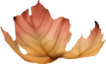 ������ jojo_autumn_forest_elementt_102 (355x216, 112Kb)